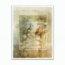 Not Fade Away by Lynn Nafey