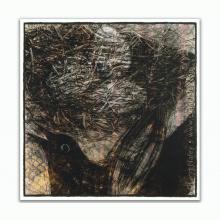 The Nest - Lynn Nafey