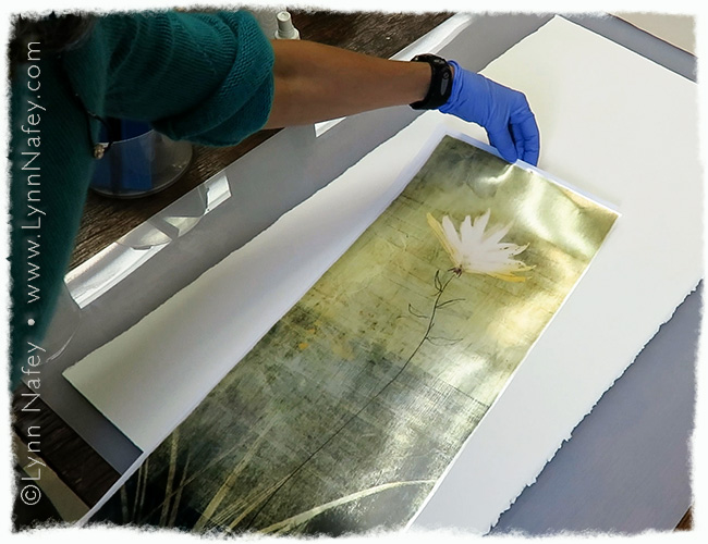"""Deckled paper and printed carrier film of """"Rising"""""""